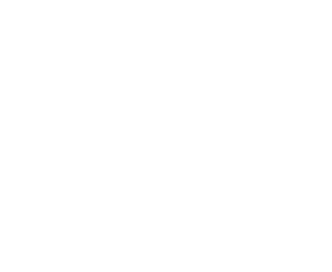 Flying Finn Academy
