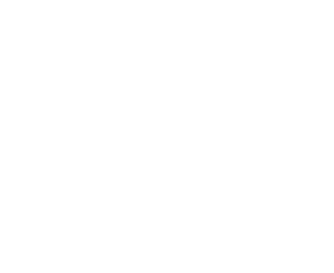Flying Finn Shop
