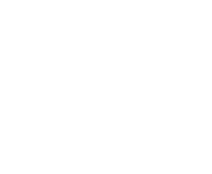 flyingfinntour
